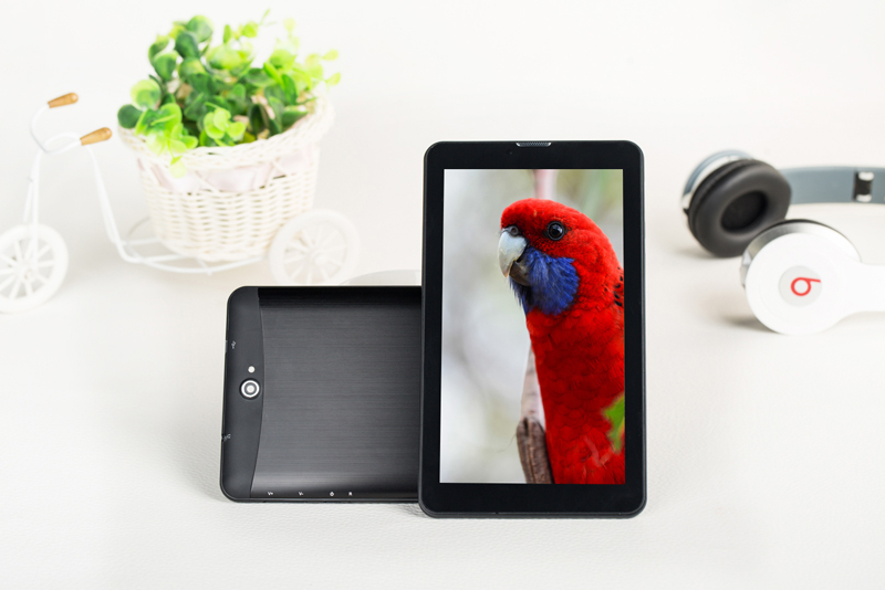 700-MTK8317 Dual Core Dual SIMs Tablet PC